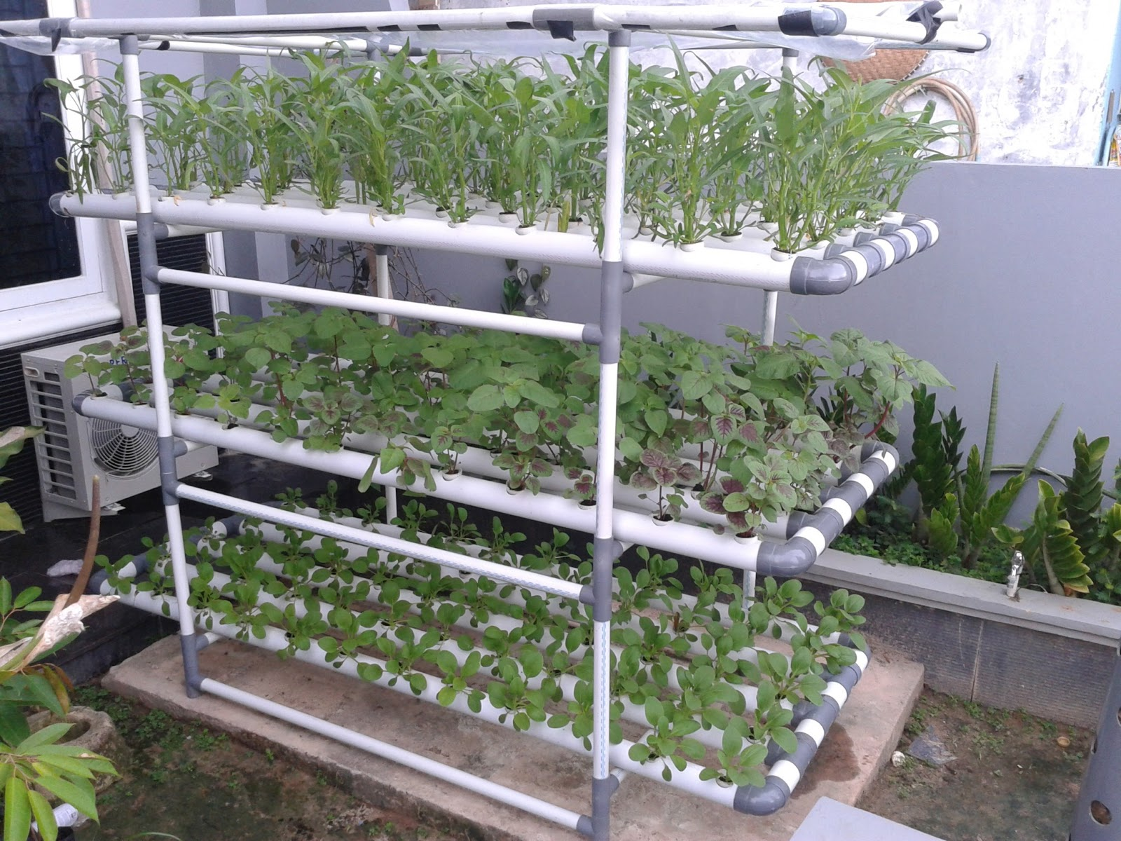 How To Make Easy Hydroponics At Home And Urban Farmer