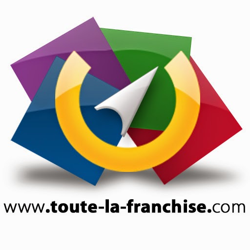 logo toute-la-franchise.com