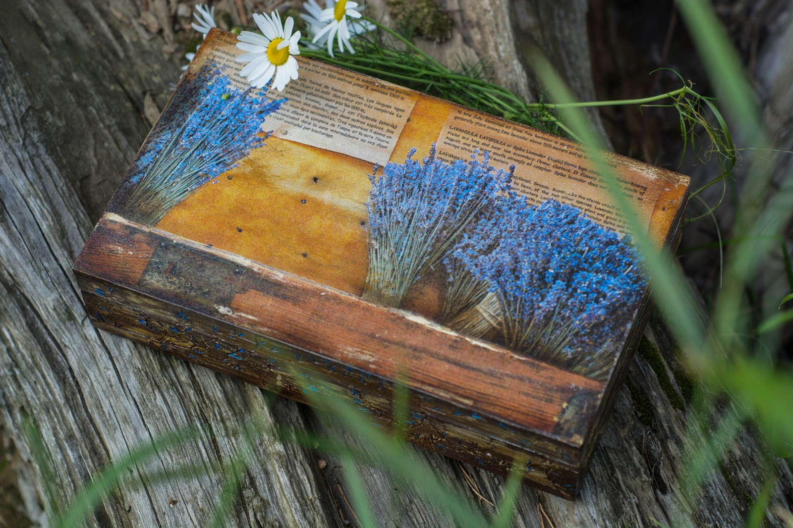 состаренная шкатулка, веточки лаванды, цветы