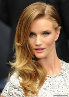 Rosie Huntington Whiteley Transformers 3 European Premiere in Berlin