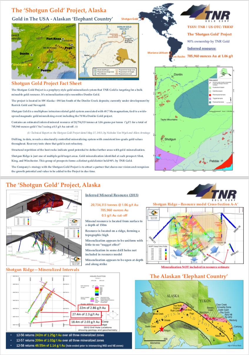 TNR Shotgun Gold Project