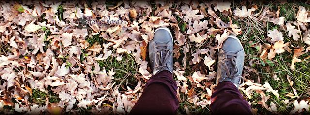 plimbare printre frunze parcul crang buzau