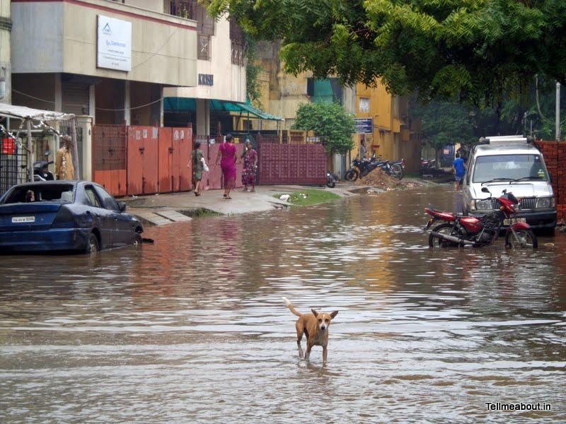 Chennai_Rain