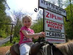 Next to Heaven Ziplines & Horse Rides
