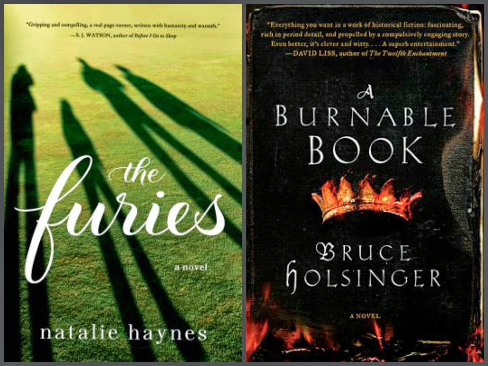 The Furies by Natalie Haynes; A Burnable Book by Bruce Holsinger