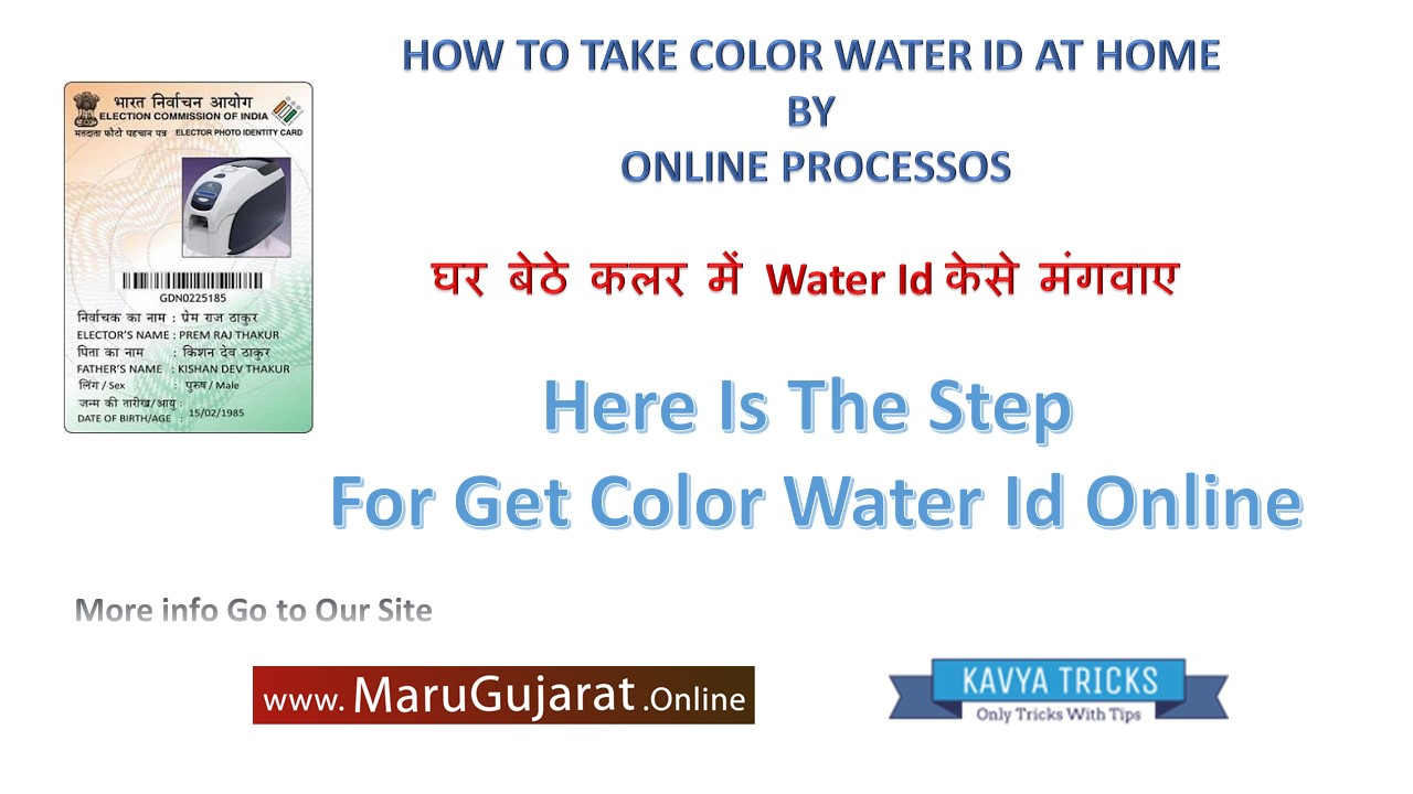 Online color voter id card gujarat - Just To Have A Passport Photo You Have To Fold The White Background Voter Id Card Will Come To Know How To Color