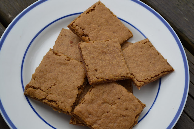 ... Gluten Free Graham Crackers {dairy free, egg free, nut free, corn free