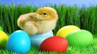 #15 Happy Easter Wallpaper