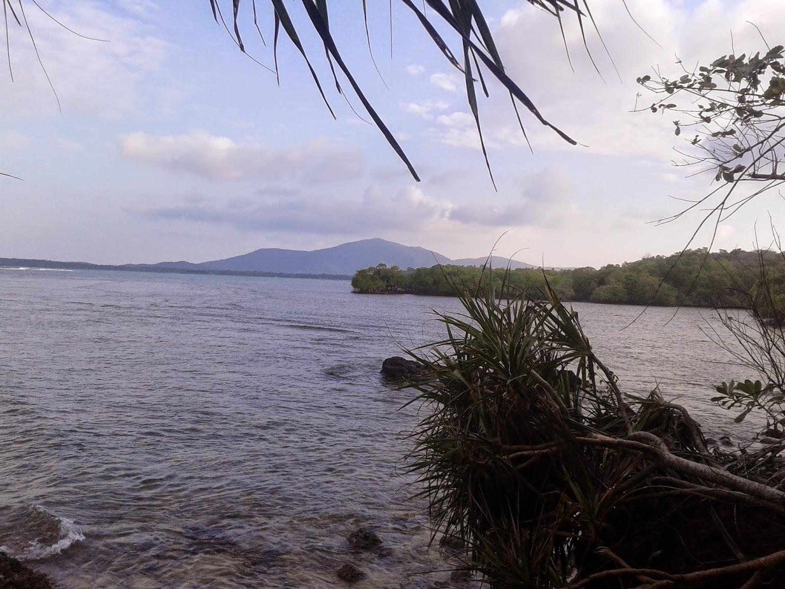 Sepanjang menyusuri rute pertama di Tracking Ujung Batulawang, Karimunjawa