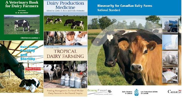 Tài liệu tiếng anh chuyên về bò sữa