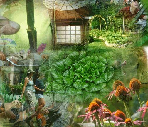 http://buenasiembra.com.ar/ecologia/articulos/que-es-permacultura-818.html