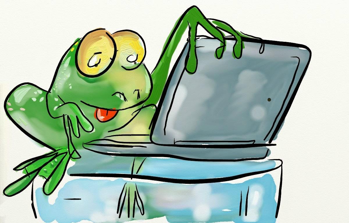 dessin humour : une grenouille consulture son ordi pour vérifier la météo.
