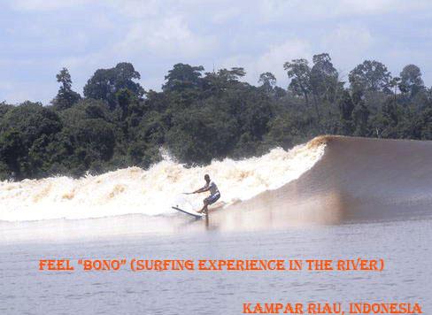 Surfing di Sungai Kampar Riau (Fenomena BONO)