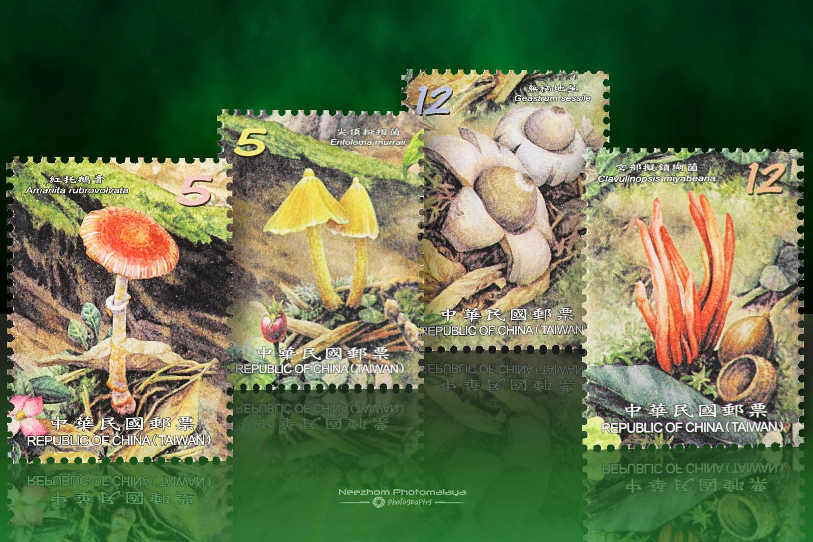 2012 Wild Mushrooms of Taiwan Stamps