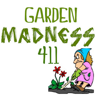 Gardening hits and misses