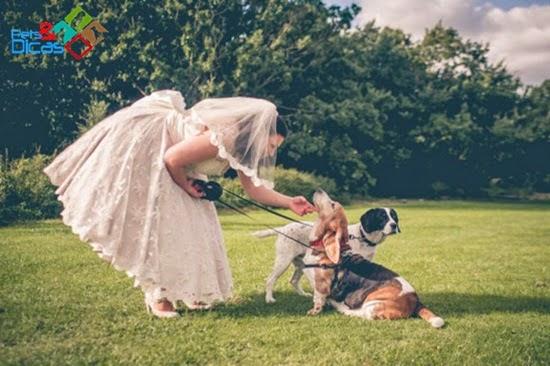 Casamento com cachorro