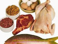 Pengertian, Jenis, dan Fungsi Protein