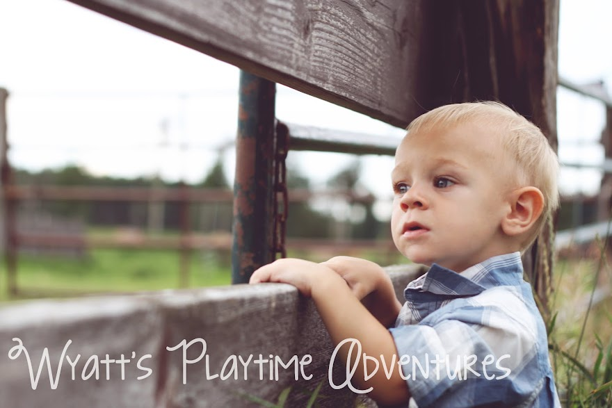 Wyatt's Playtime Adventures