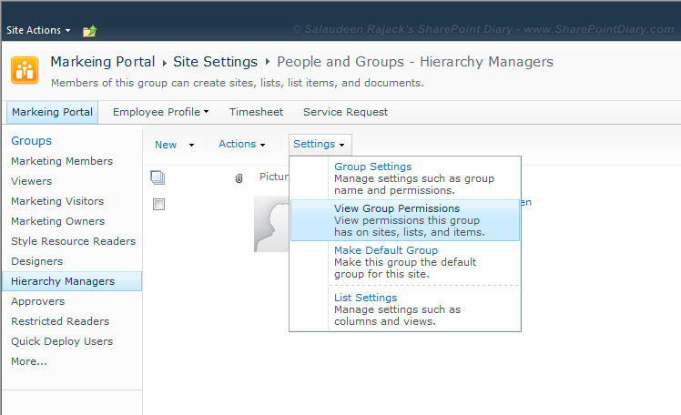 sharepoint check group permission level