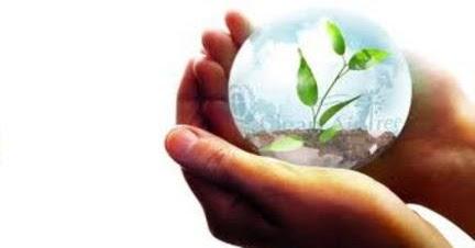 Cuidemos el Medio Ambiente: Acciones para <b>Cuidar</b> el Medio ...