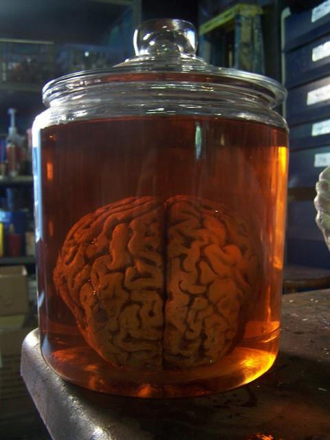 Brain Jack Image