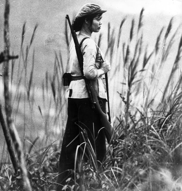 Vietnam war essay thesis
