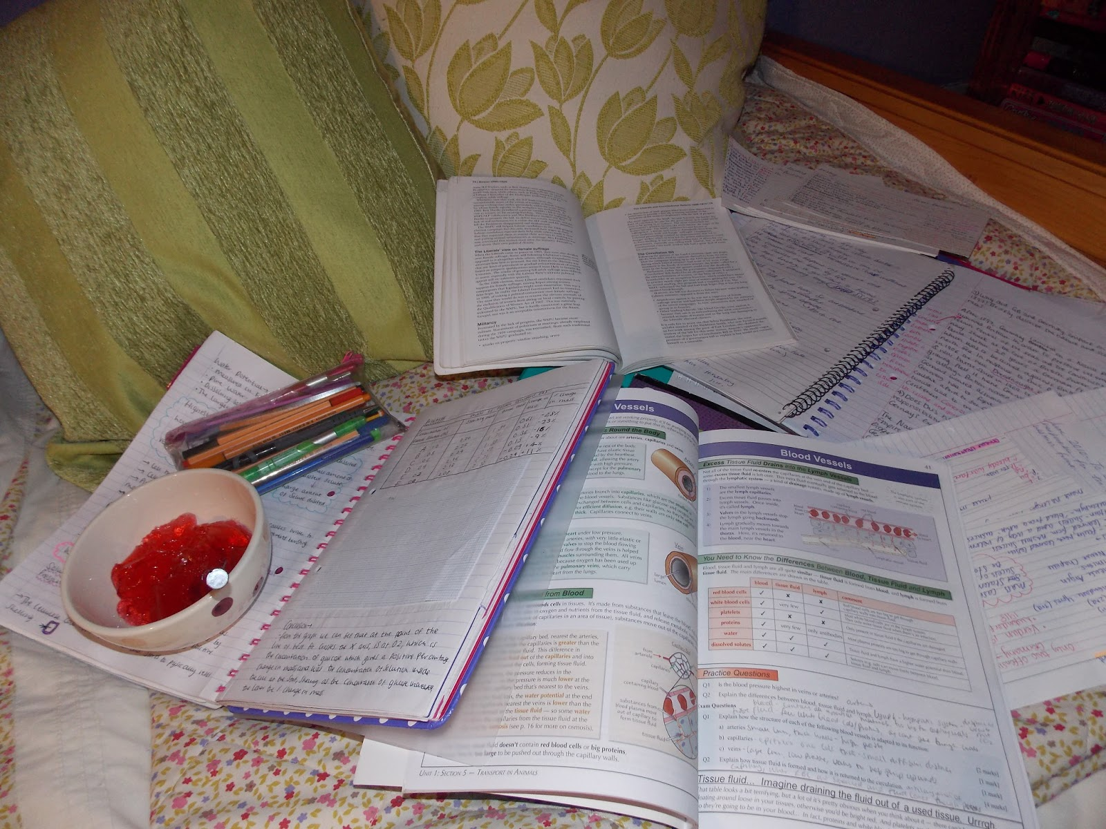 How to deal with Exam Revision Stress. Blogger help.