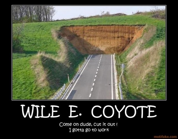 My daily kona wile e coyoteper genius wile e coyote appears as an employee of the acme corporation in looney tunes back in action there his role is similar to that of mustafa from the austin colourmoves