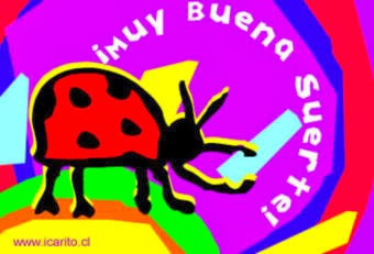 imagen de un escarabajo
