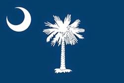 Güney Karolina Bayrağı
