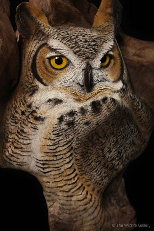 My owl barn earl martz wood carving illustrated