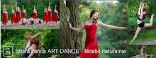 Strefa Tańca Art Dance