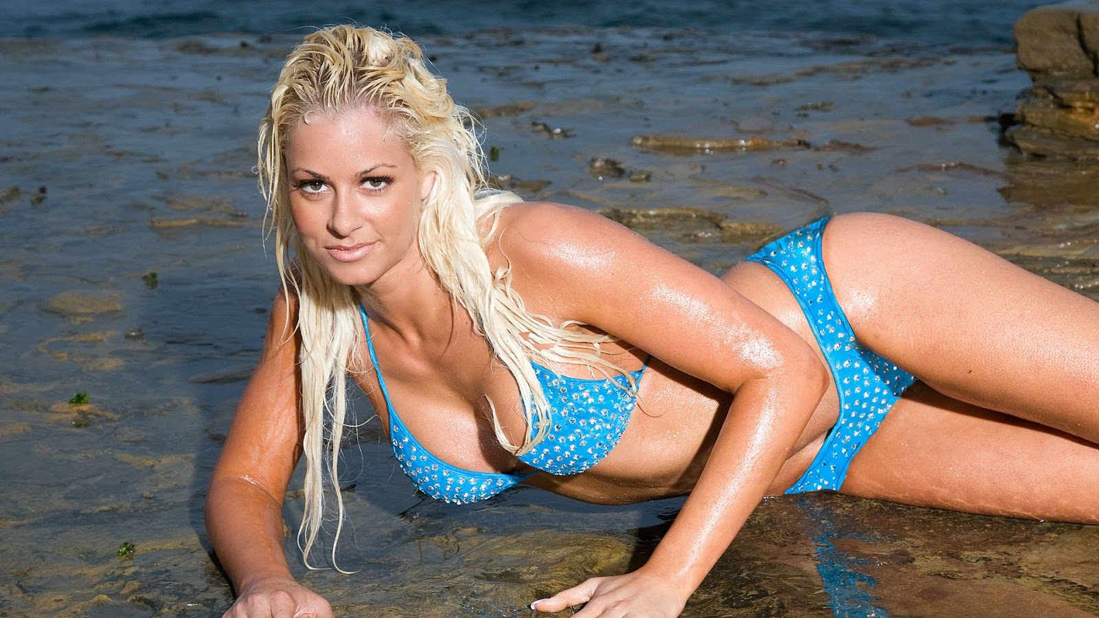Top hottest and sexiest wwe divas ever wwe snaps for Hottest wwe diva