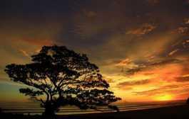 Senja Di pantai Pok Tunggal Yogyakarta