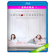 Thoroughbreds (2017) BRRip 1080p Audio Dual Latino-Ingles