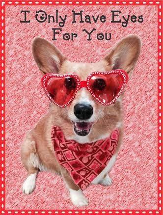 A Very Corgi Valentines Day The Daily Corgi