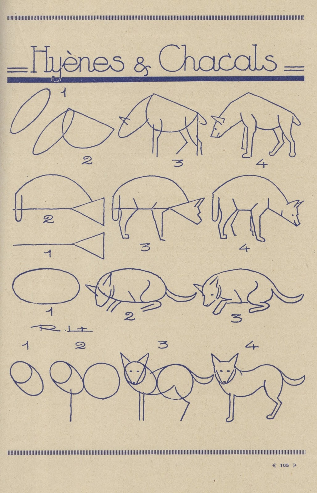 how to draw a spotted hyena step by step