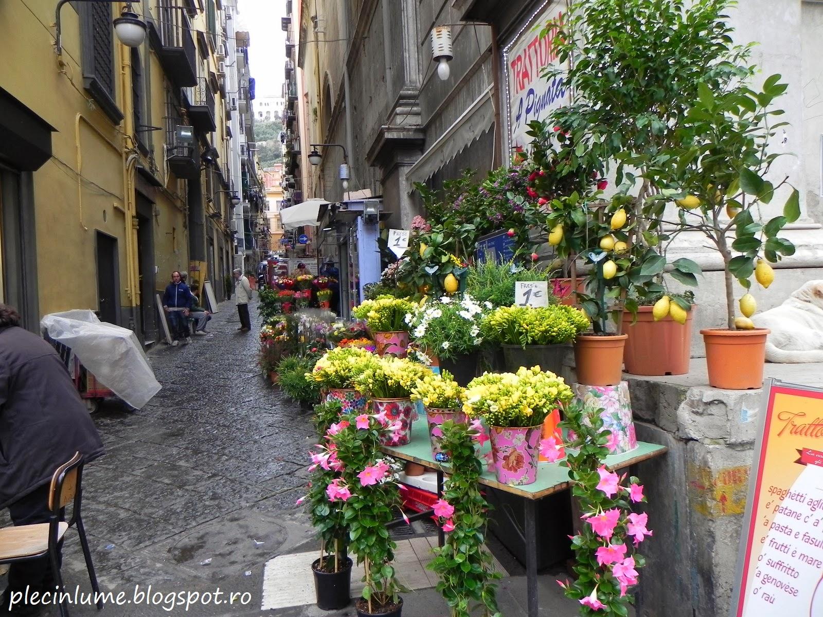 Florarie pe via Toledo