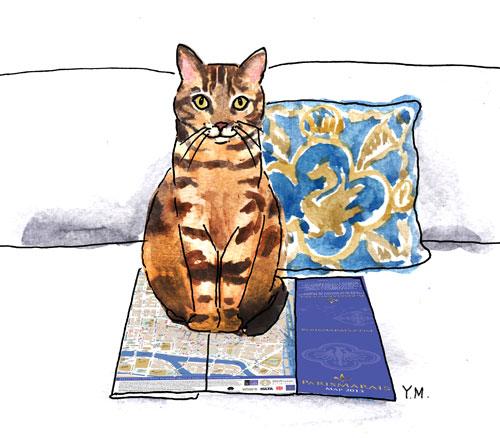 Charlot-the-cat assis sur le plan PARISMARAIS 2013 par Yukié Matsushita