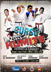 Curso Interrnacional de Kumite Deportivo