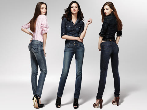 Image result for LEVI's model