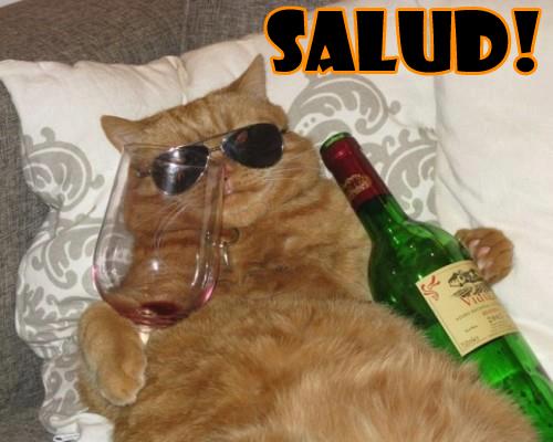 Meme desmotivacion humor alcohol Meme desmotivacion humor alcohol