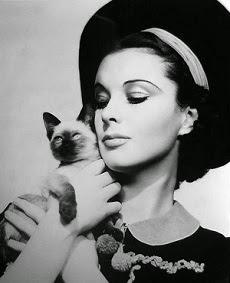 A Viv, también le gustaban los gatos
