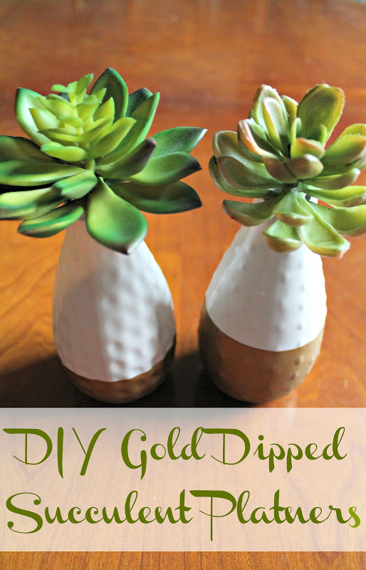 Diy Gold Dipped Succulent Planters Shannon Claire