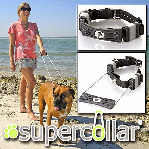 Innovative and Clever Dog Leashes (15) 11
