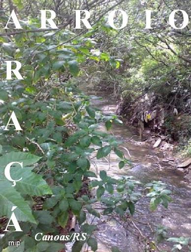 Nosso Rio Guri