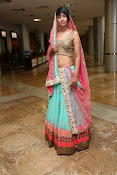 Model Alice Rosario glam pics in Lehenga-thumbnail-19