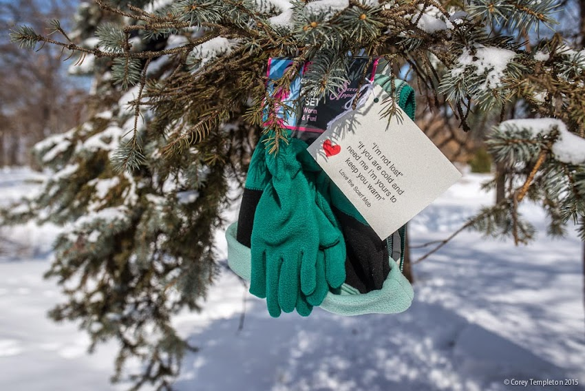 Portland, Maine scarf mob, hat and gloves in a tree in Deering Oaks February 2015 photo by Corey Templeton