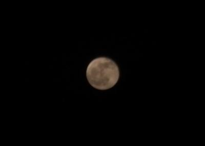 canon powershot moon photo