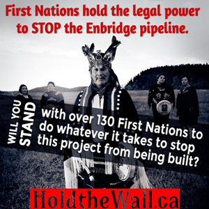 Stop the Enbridge Oil Pipeline